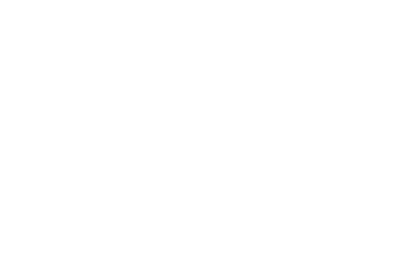 Art of Zirbe Logo weiß